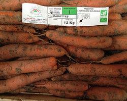 Trégor Primeurs - Plestin-les-Grèves - Fruits et légumes